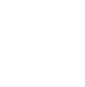 Le groupe Custeau